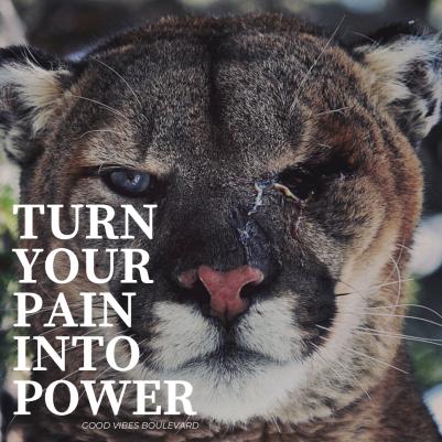 Leef het Leven Inspirerend Citaat Instagram Post